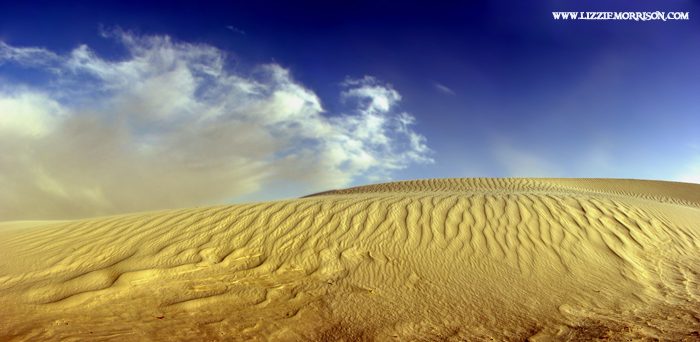 New Mexico Sand Dunes copy