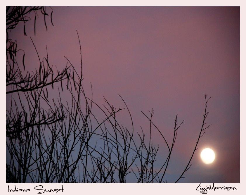 1-10-2009 Moon/Sunset